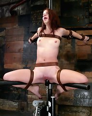 Welcome Sarah Blake as Hogtied\'s new face