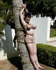 Fine outdoor bondage
