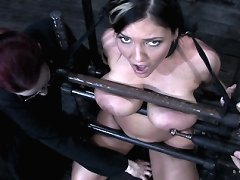 Slave bound in metal and dildo stick fucked